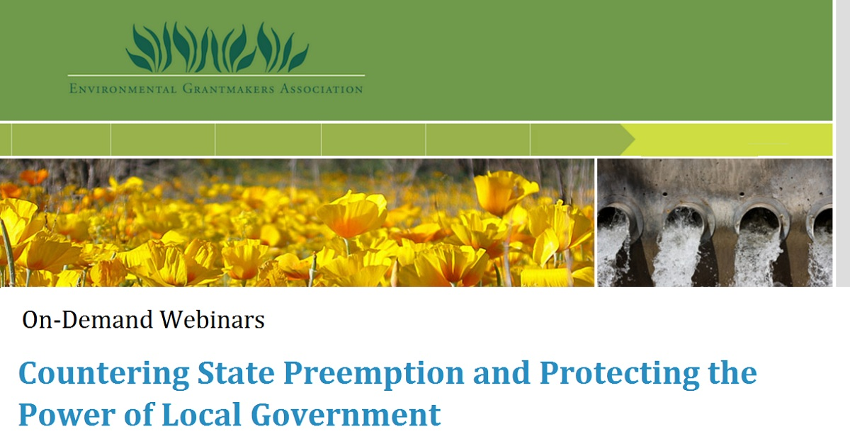 Countering State Preemption and Protecting the Power of Local Government